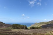 Forest, sea and blue sky in Wales above Nant Gwrtheyrn